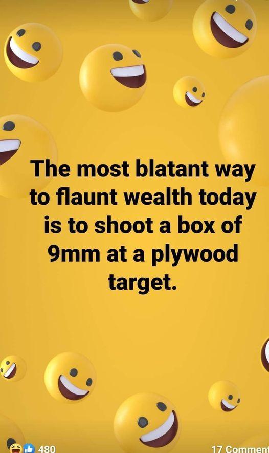 Flaunt the wealth.jpg